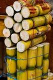 Sugar Cane fresco imagem de stock