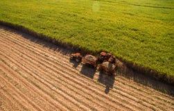 Sugar cane hasvest plantation field. Sugar cane hasvest plantation aerial stock image