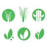 Sugar cane icons set  illustration eps 10 Stock Images
