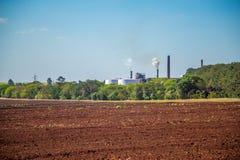 Sugar Cane Industry royalty-vrije stock foto's