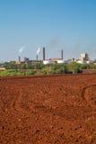 Sugar Cane Industry Fotos de archivo
