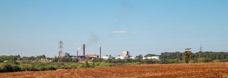 Sugar Cane Industry royalty-vrije stock fotografie