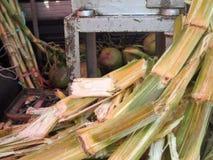 Sugar cane juice machine Stock Photos