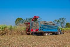 Sugar Cane Machine, Sugar Cane Machine em Tailândia Imagens de Stock Royalty Free