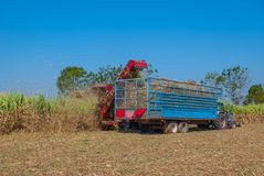 Sugar Cane Machine, Sugar Cane Machine en Tailandia Imágenes de archivo libres de regalías