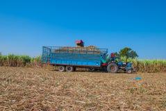 Sugar Cane Machine, Sugar Cane Machine en Tailandia Fotos de archivo libres de regalías