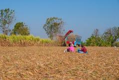 Sugar Cane Machine, Sugar Cane Machine in Tailandia Immagini Stock