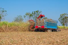 Sugar Cane Machine, Sugar Cane Machine in Thailand Stockfoto