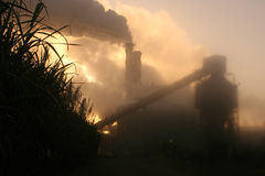 Sugar cane mill in misty sunrise. Sugar factory in early morning mist Stock Images