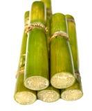 Sugar Cane. Over white background Royalty Free Stock Image