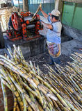 Sugar cane processing Royalty Free Stock Images