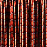 Sugar cane red. Royalty Free Stock Photo