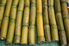 Sugar cane sticks for sale in a market Stock Photo