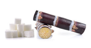 Sugar cane and sugar cube on white background Royalty Free Stock Photography