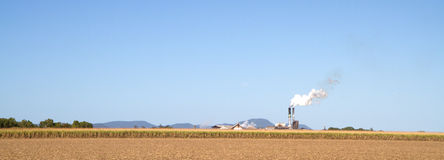 Sugar cane and sugar mill in Queensland. Partly harvested field of sugar cane with the Proserpine sugar mill in the background in Queensland, Australia Stock Images