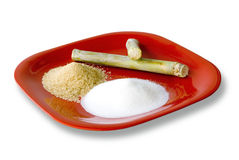 Sugar cane and sugar products Stock Photography