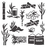 Sugar cane, sugarcane plant harvest vector silhouette icons isolated on white background. Illustration of sweet harvest plant agriculture vector illustration