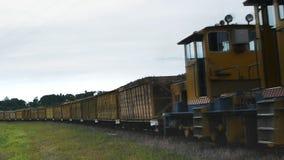 Sugar cane train. A train hauls harvested sugar cane to a mill in Mossman, Qld Australia stock footage