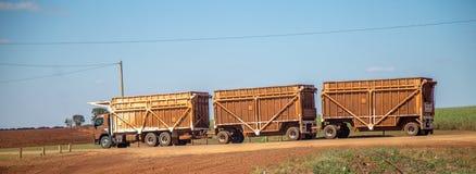 Sugar cane transporter Stock Photography