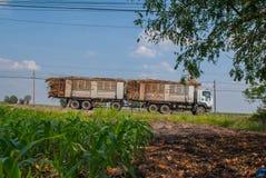Sugar cane trucks in Thailand, Sugar cane trucks royalty free stock image