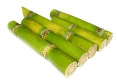 Sugar Cane. On white background Royalty Free Stock Image