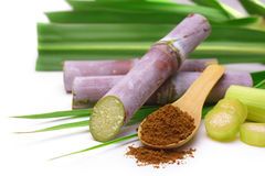 Free Sugar Cane With Brown Sugar. Royalty Free Stock Images - 74290249