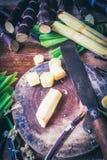 Sugar Canes Royalty Free Stock Photos