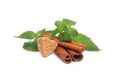 Sugar, cinnamon and mint Royalty Free Stock Photo