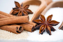Sugar and cinnamon sticks Royalty Free Stock Photo