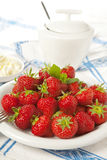Sugar cream and strawberries Stock Images