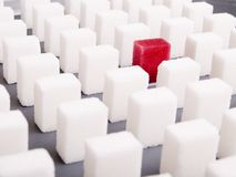 Sugar cube. Many white cubes and one red Royalty Free Stock Photography