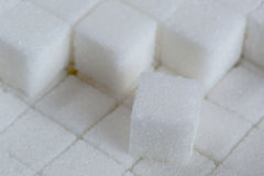 Sugar Cube in a Box Stock Photography
