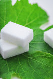Sugar cube on leaf Royalty Free Stock Images