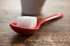 Sugar cube in a red spoon Stock Photo