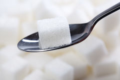 Sugar cube on spoon Stock Photos