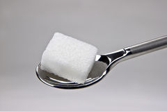 Sugar cubes. Piece of sugar cubes on a spoon Royalty Free Stock Images
