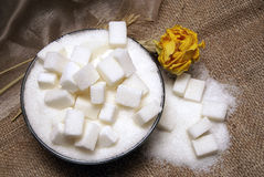 Sugar cubes. In bowl with rose royalty free stock images