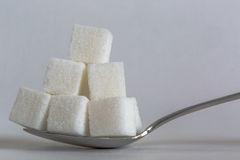 Sugar Cubes Spoon Royalty Free Stock Image