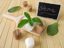 Sugar cubes and stevia. With nameplate Royalty Free Stock Image