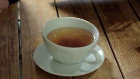 Sugar Droping In To Tea banque de vidéos