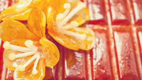 Sugar Flower on Cake Royalty Free Stock Photography