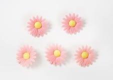 Sugar flowers Royalty Free Stock Image