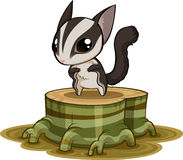 Sugar glider. On the stump Stock Photo