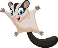 Sugar glider cartoon Royalty Free Stock Image