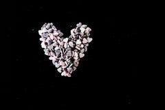Sugar Hearts Fotografia Stock Libera da Diritti