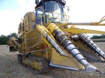 Sugar Industry Sugarcane Harvest Scene in Ingham Queensland Australia royalty free stock photo