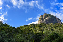 Sugar Loaf hill over the tropical forest Stock Images