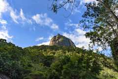 Sugar Loaf hill over the tropical forest Stock Photography