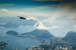 Sugar-loaf-mountain in Rio Royalty Free Stock Photos