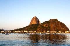 The sugar loaf mountain Royalty Free Stock Image